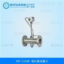 硫化氫流量計專業生產廠家