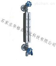 雙色電子式石英管液位計