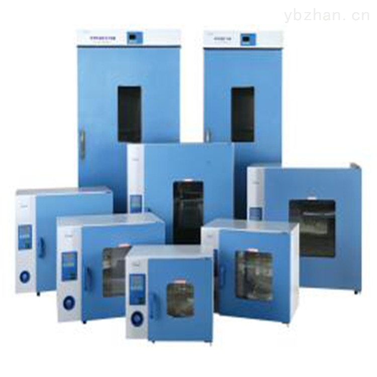 电热鼓风干燥试验箱(9000系列)