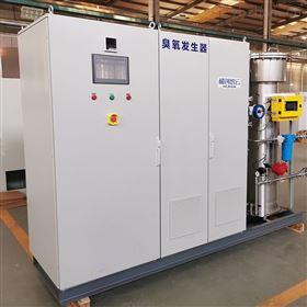 HCCF浙江臭氧发生器规格-地表水厂水厂消毒设备