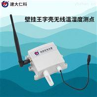 RS-WS-DY-2-*建大仁科 环境温湿度传感器 现货价格