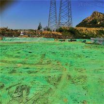 新型环保固沙抑尘剂