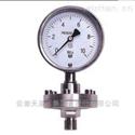 YN-100耐震压力表型号