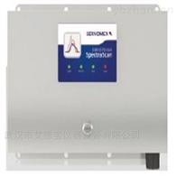 (2400)轻烃气体分析仪