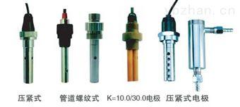 DDG-0.01工业电导电极/DD传感器生产厂家