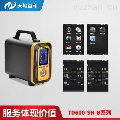 TD600-SH-B-M6手提式有毒有害气体分析仪可选配无线传输功能