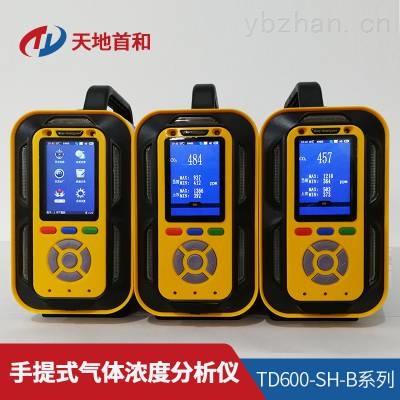 TD600-SH-B-Ar手提式氩气分析仪可选配采样手柄检测高温环境