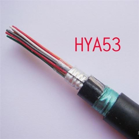 大规格-铠装对称通讯电缆HYA553 HYA53