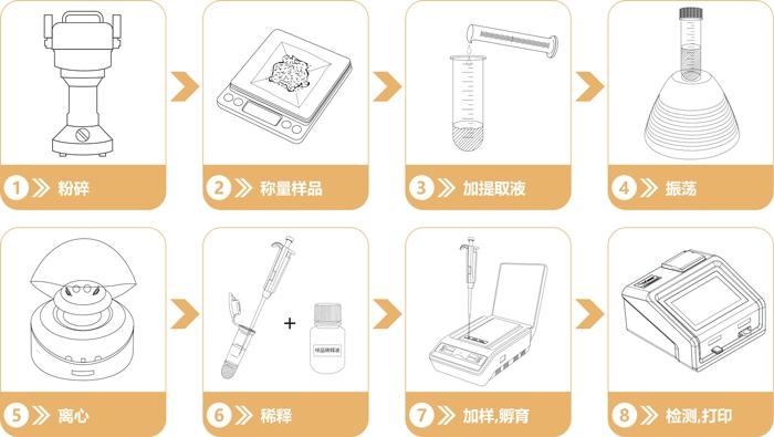 重金属检测仪检测流程