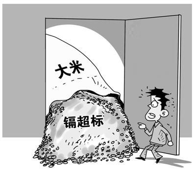 镉超标大米