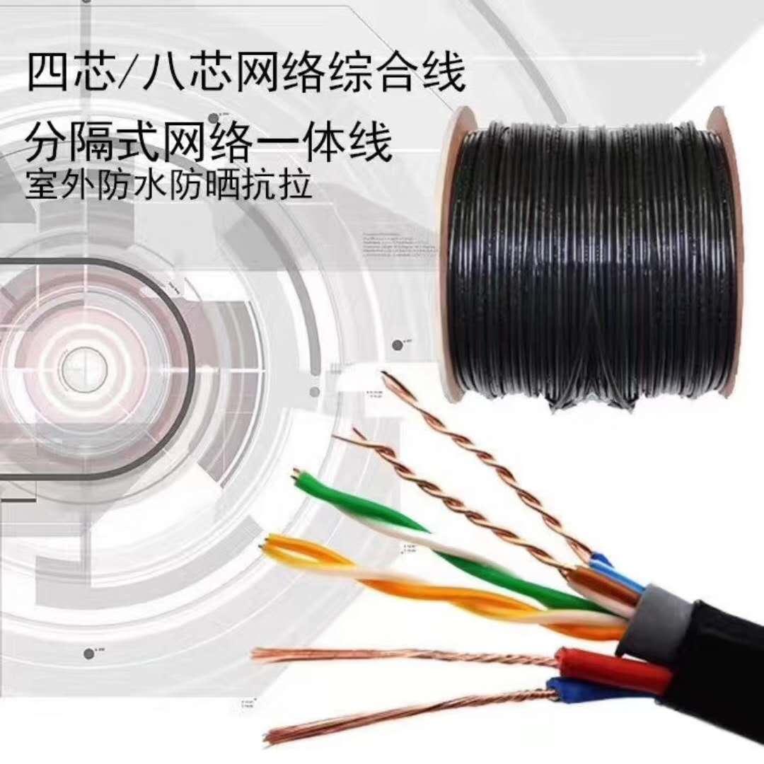 广西贺州市室外屏蔽电缆RVVP2*1.0电缆